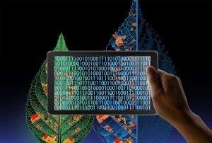 Artificial Intelligence Bridges Educational Disparity Across the World